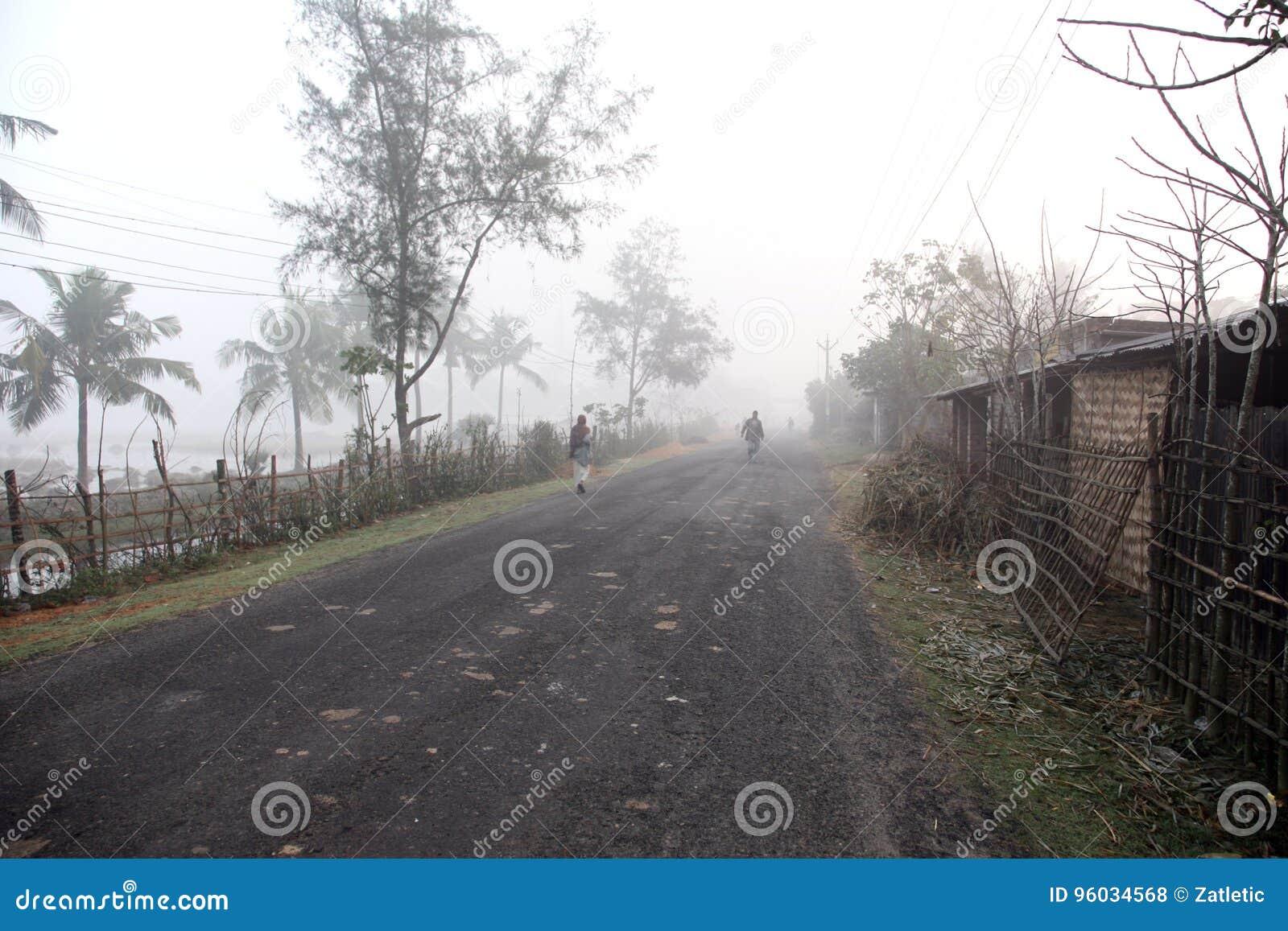 Mglisty ranek w Bengalia wsi