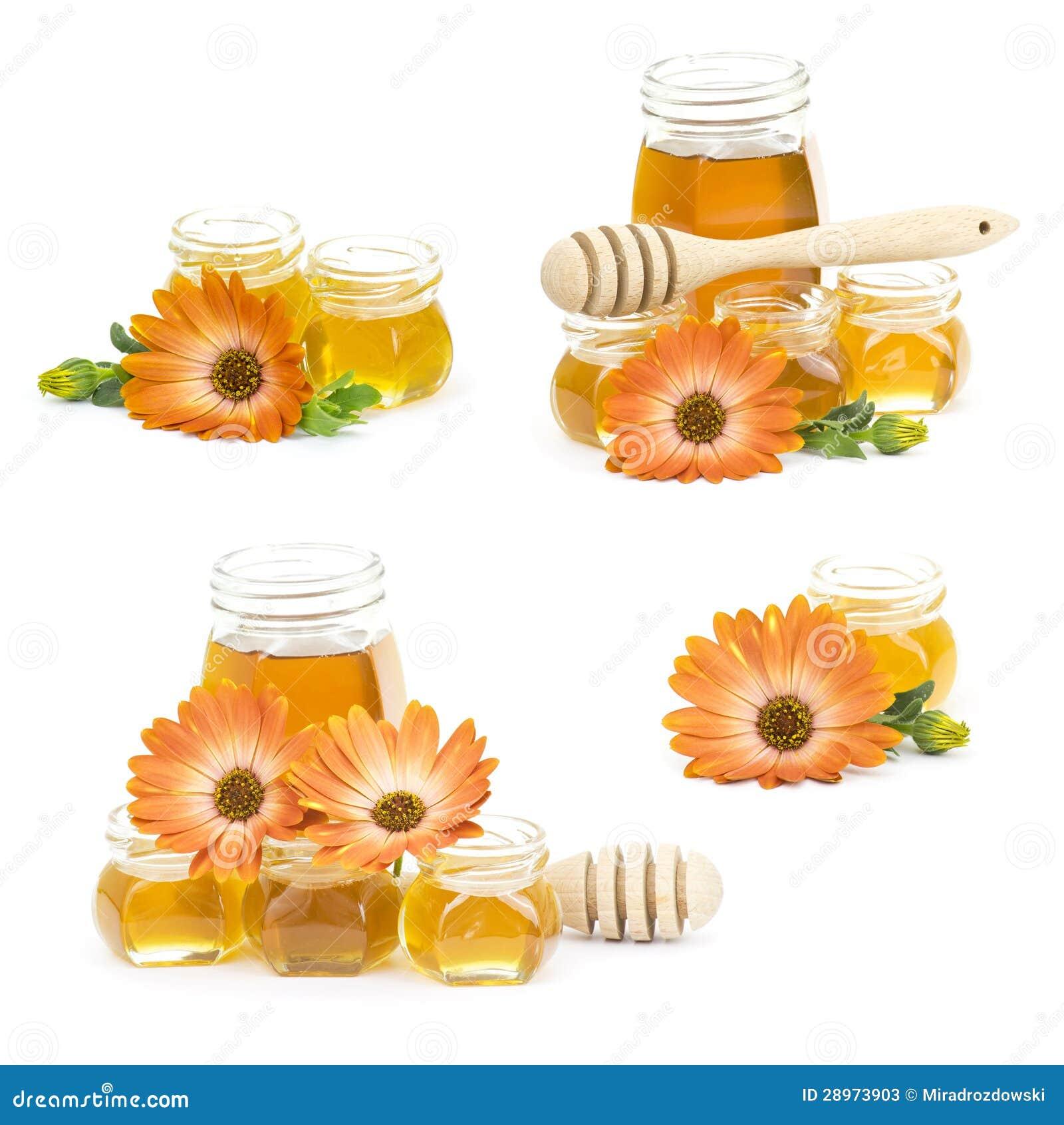 Miód i kwiaty