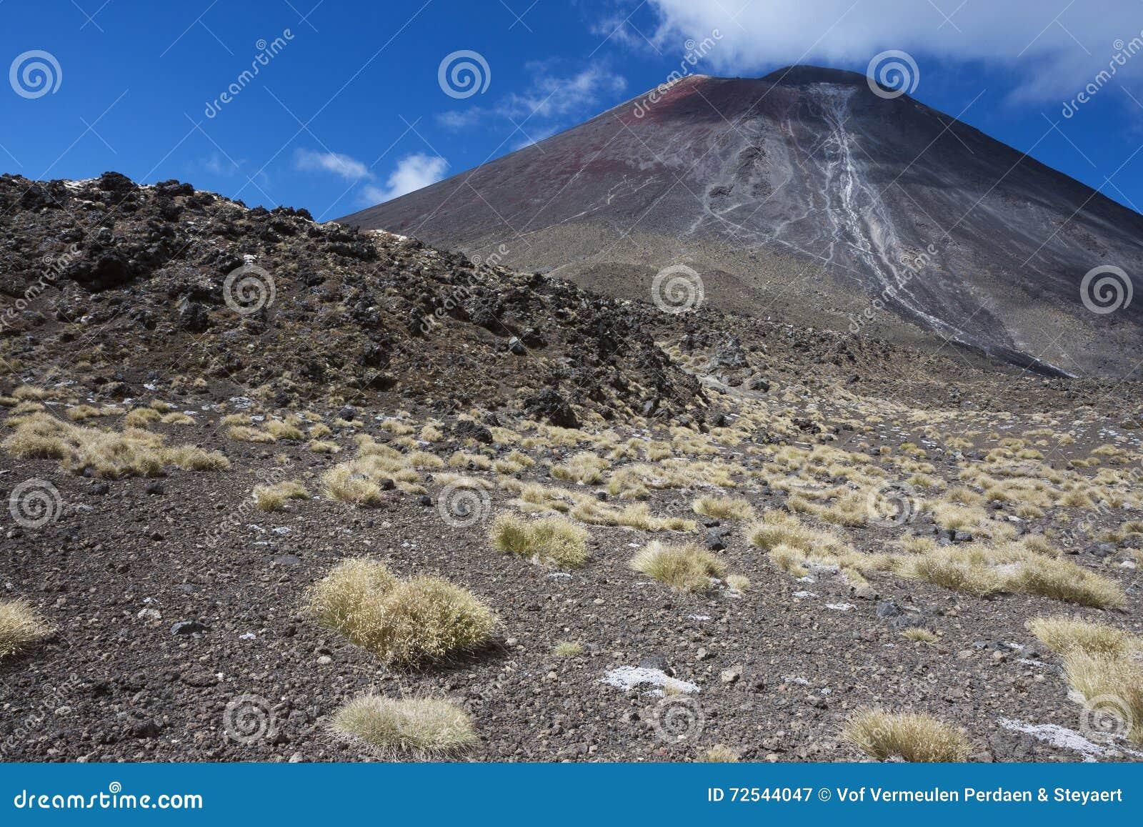 Między Sodowanymi wiosnami i Południowym kraterem