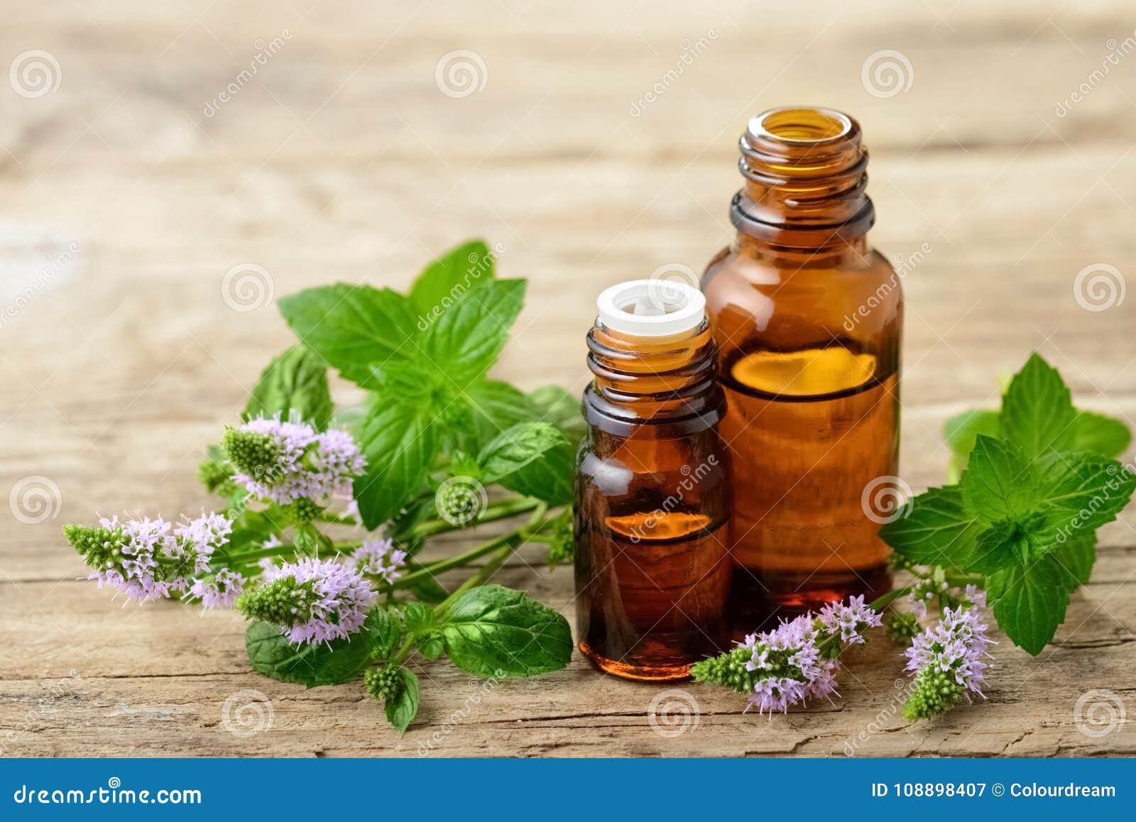 Miętówka istotny olej i świezi miętówka kwiaty na drewnianym stole