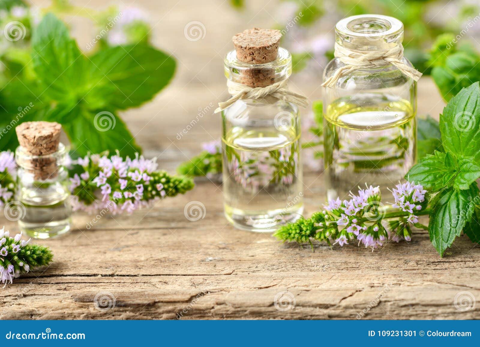 Miętówka istotny olej i miętówka kwiaty na drewnianej desce