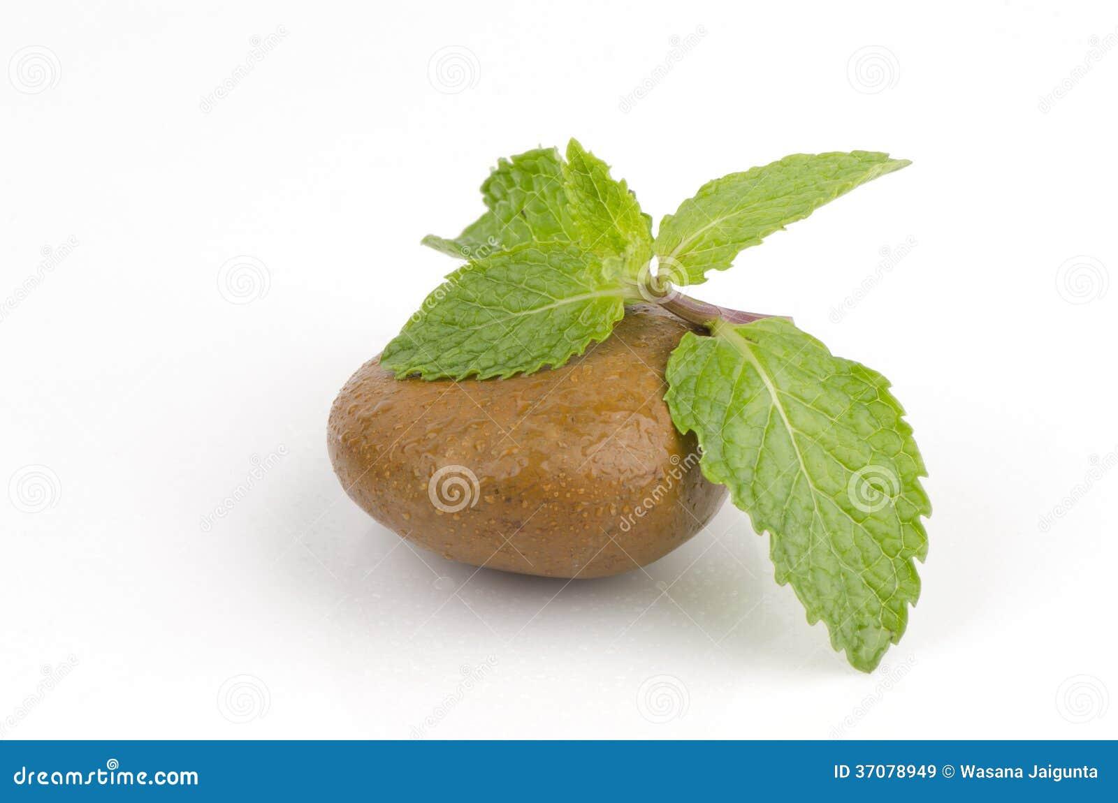 Download Miętówka, Mędrzec, Kuchni Mennica, Bagno Mennica (Mentha Cordifolia Opiz.) Obraz Stock - Obraz złożonej z liść, apteka: 37078949