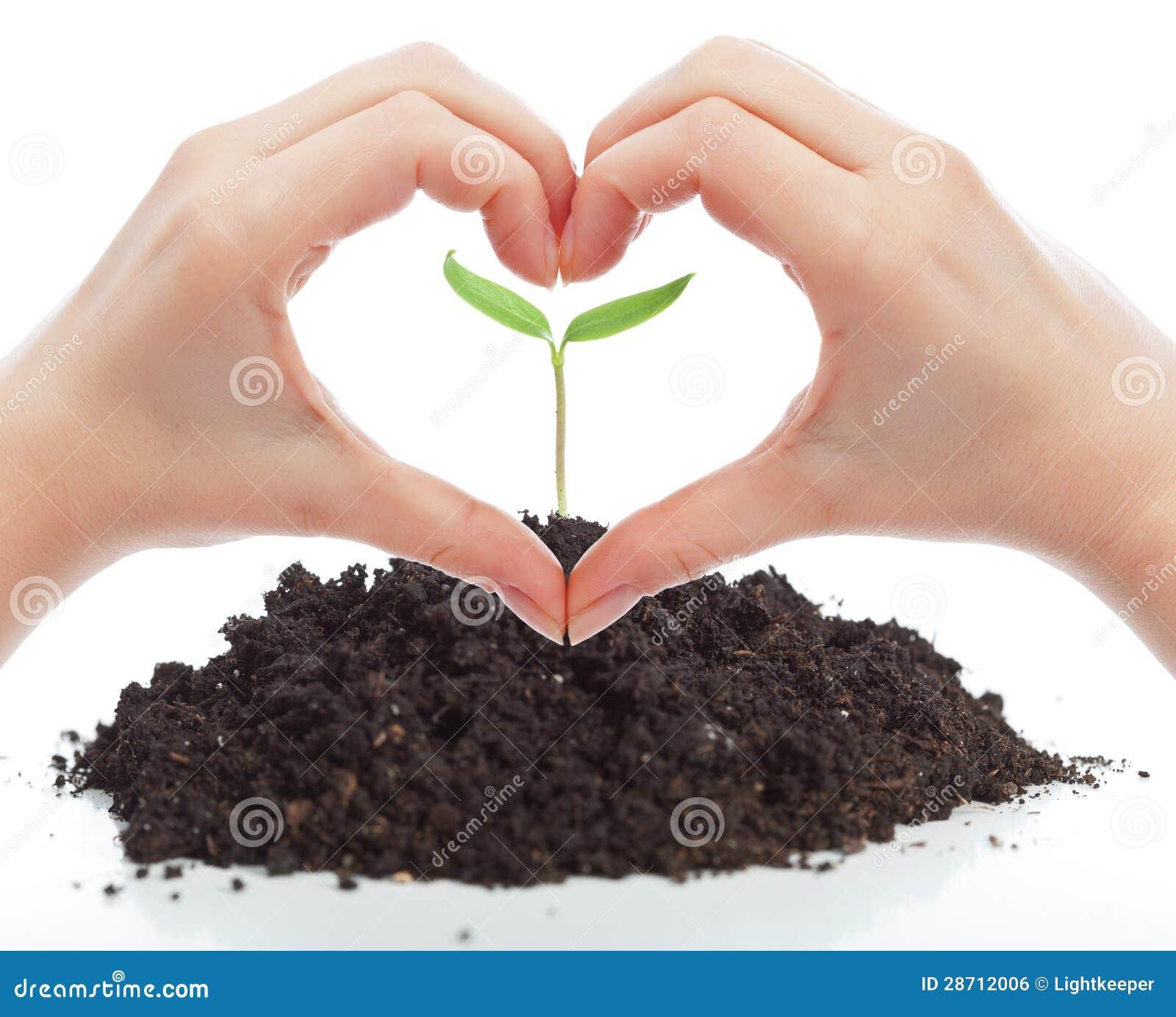 Miłość dla natury pojęcia