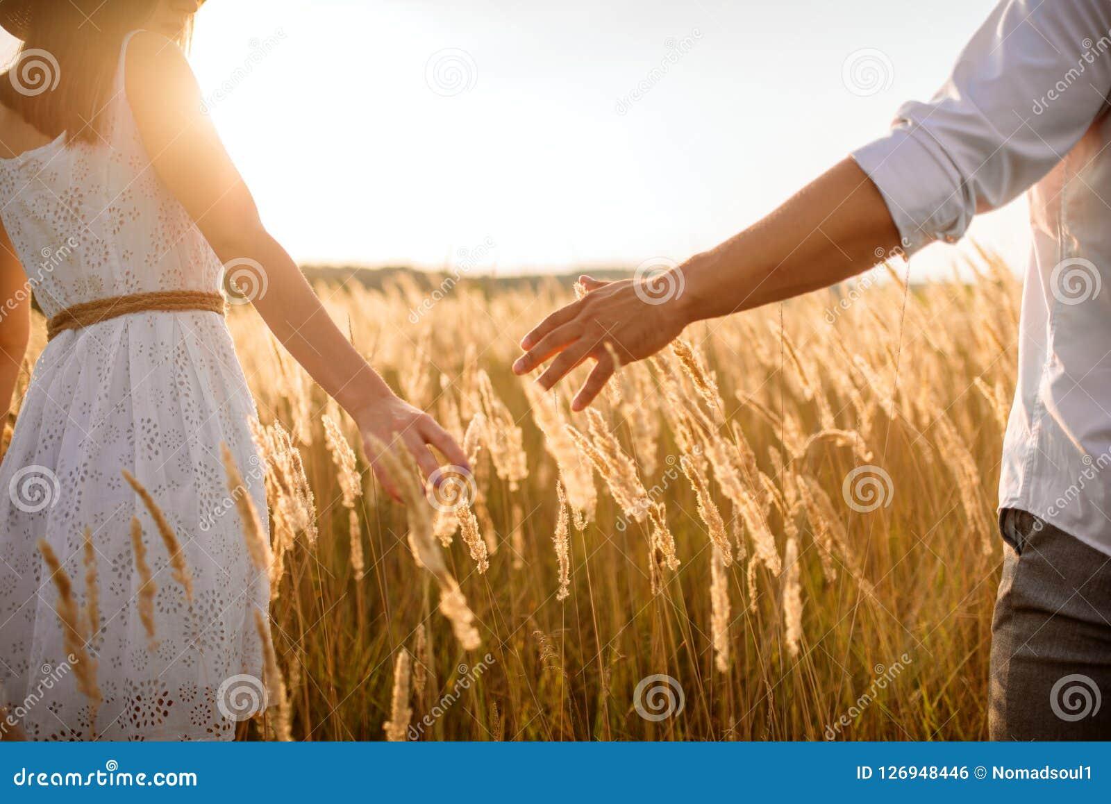 Miłości pary chwyta ręki w żyta polu na zmierzchu