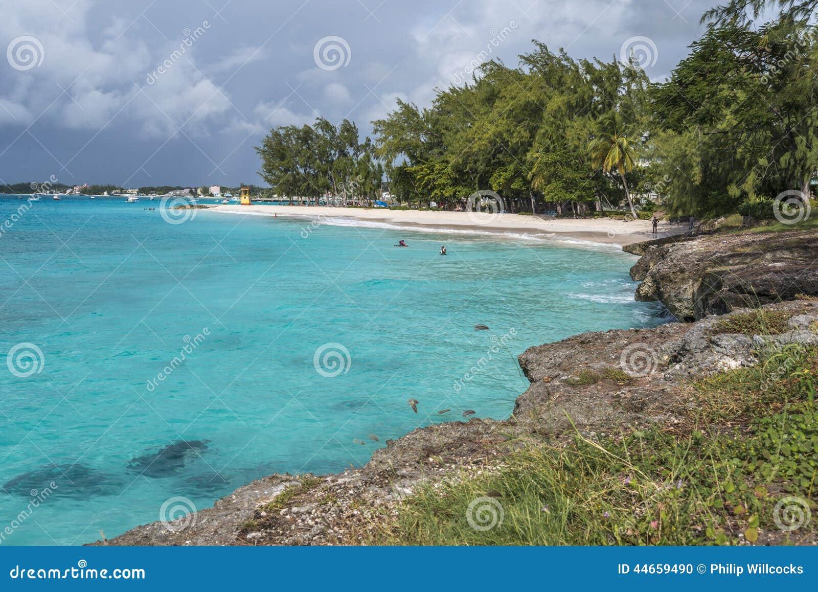 miami beach barbados editorial image. image of island - 44659490
