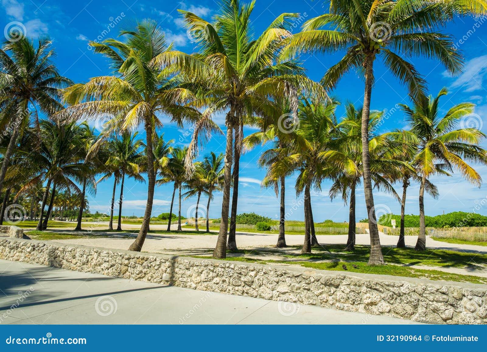 Miami Beach Stock Photo. Image Of Beach, Relax, Miami
