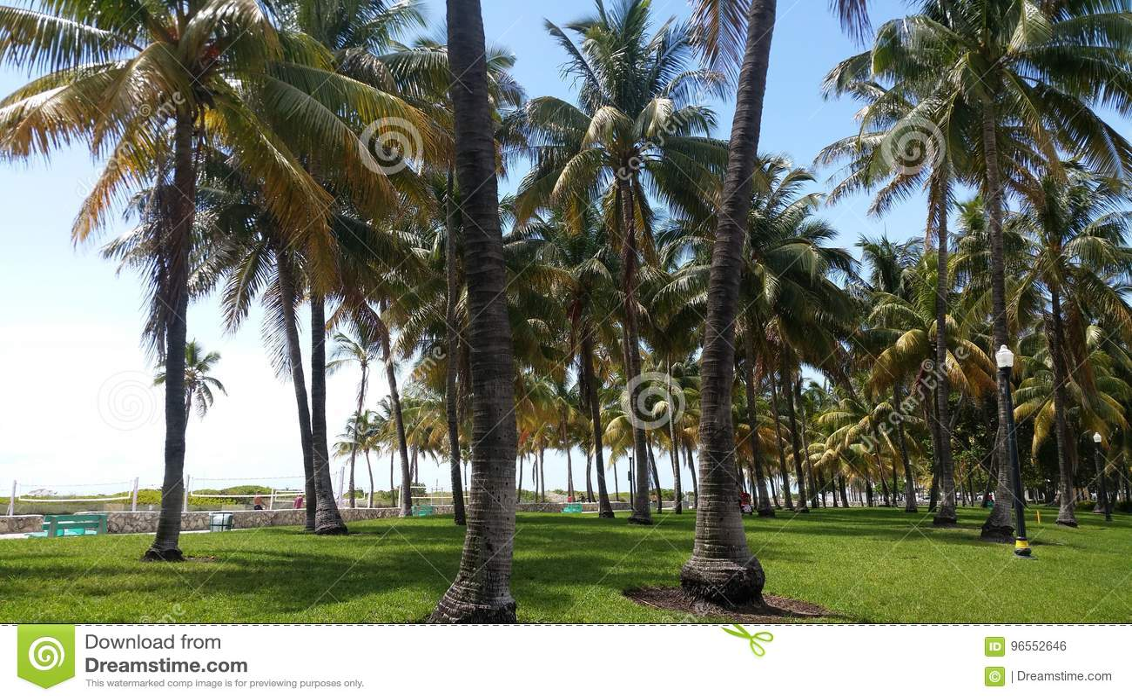 Miami beach Florydy