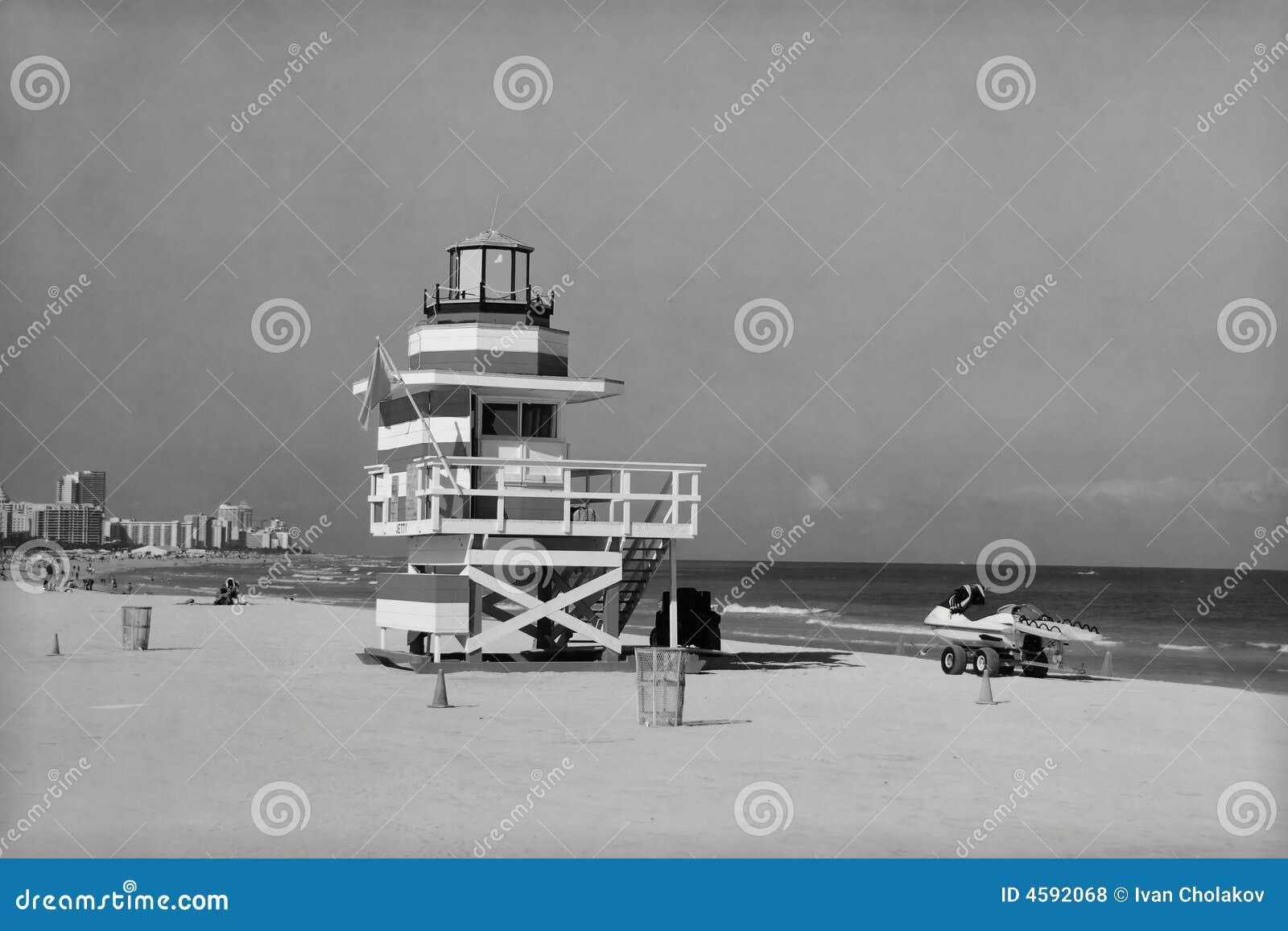 Miami beach rocznik