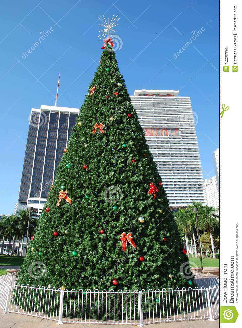 the tall christmas tree holiday decorations in miami downtown florida