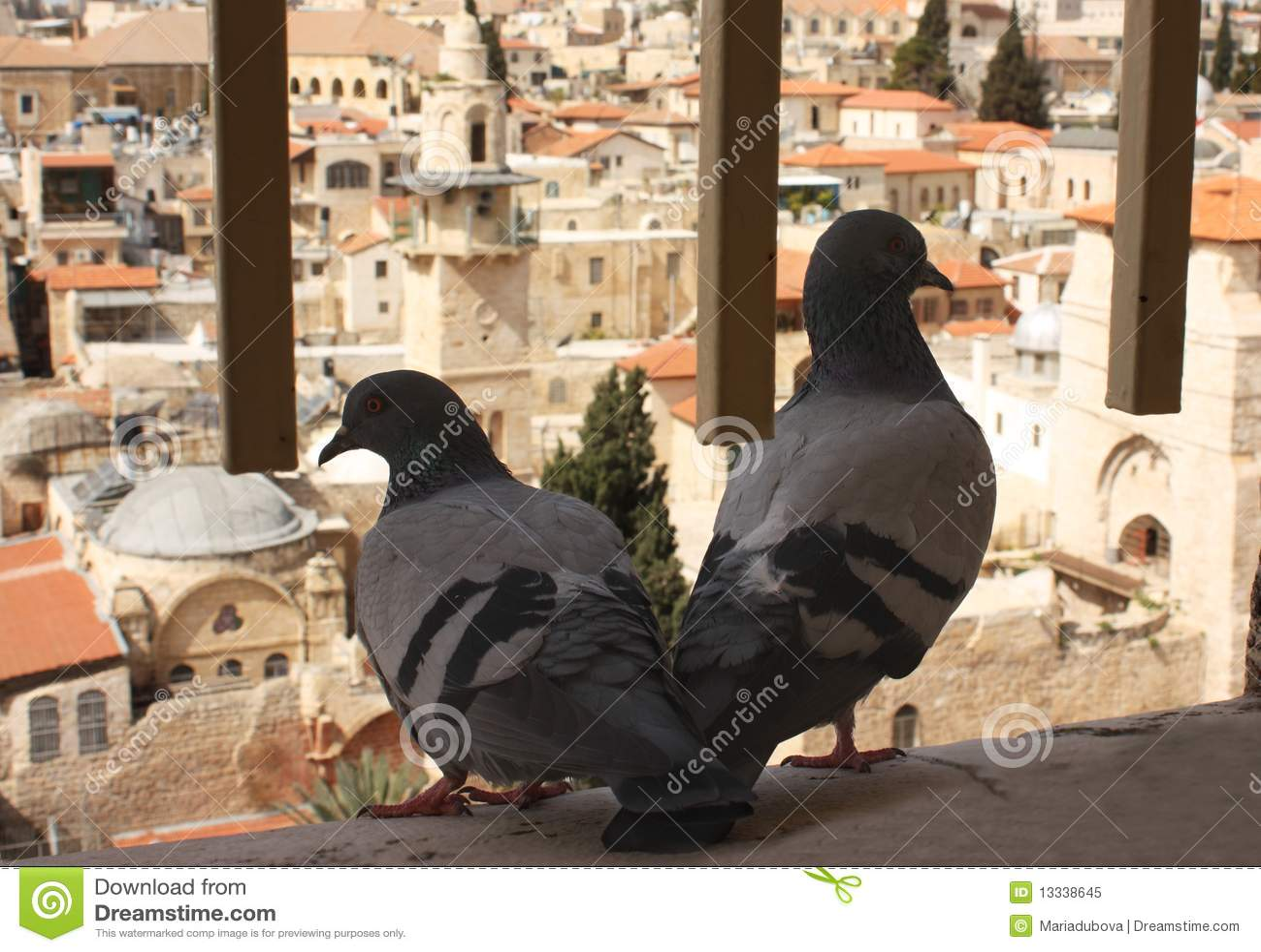 Miasto Jerusalem stary