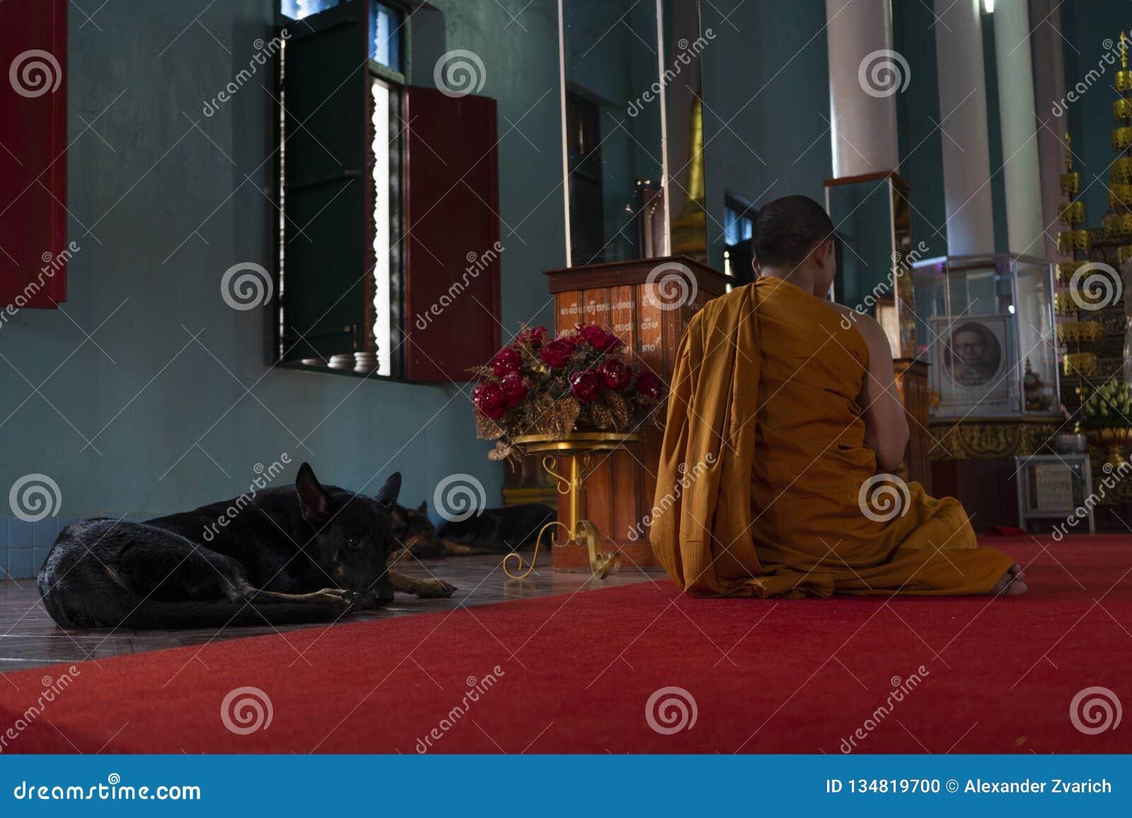 Michaelici ono modli się w buddyjskiej świątyni