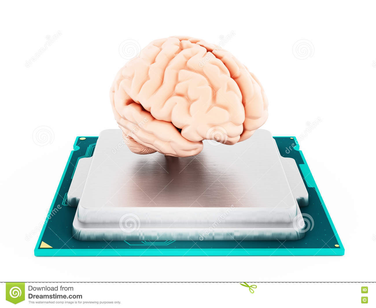 microprocessor and human brain 3d illustration stock illustrationmicroprocessor and human brain isolated on white background 3d illustration