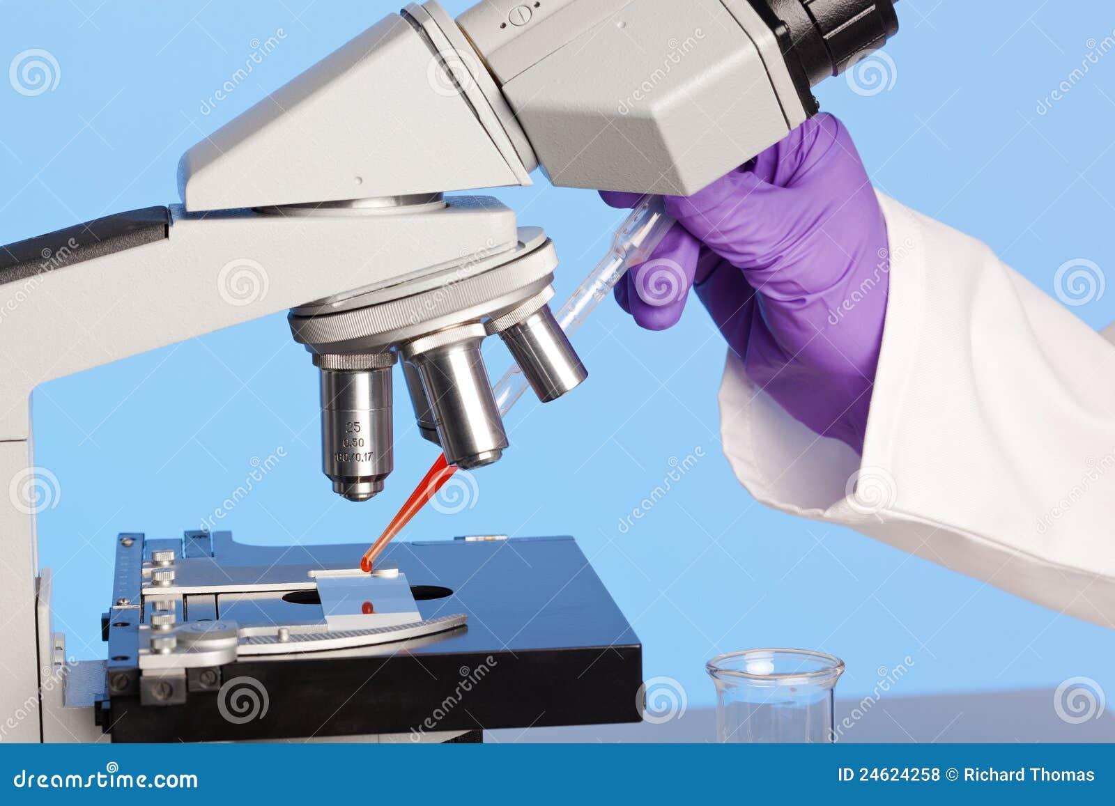 Microscope stéréo et sang de laboratoire