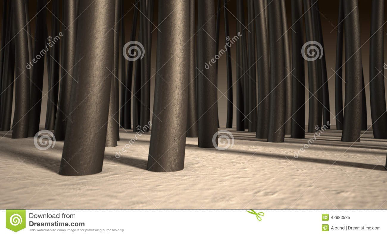 Microscopic Hair Roots Stock Photo Image 42983585