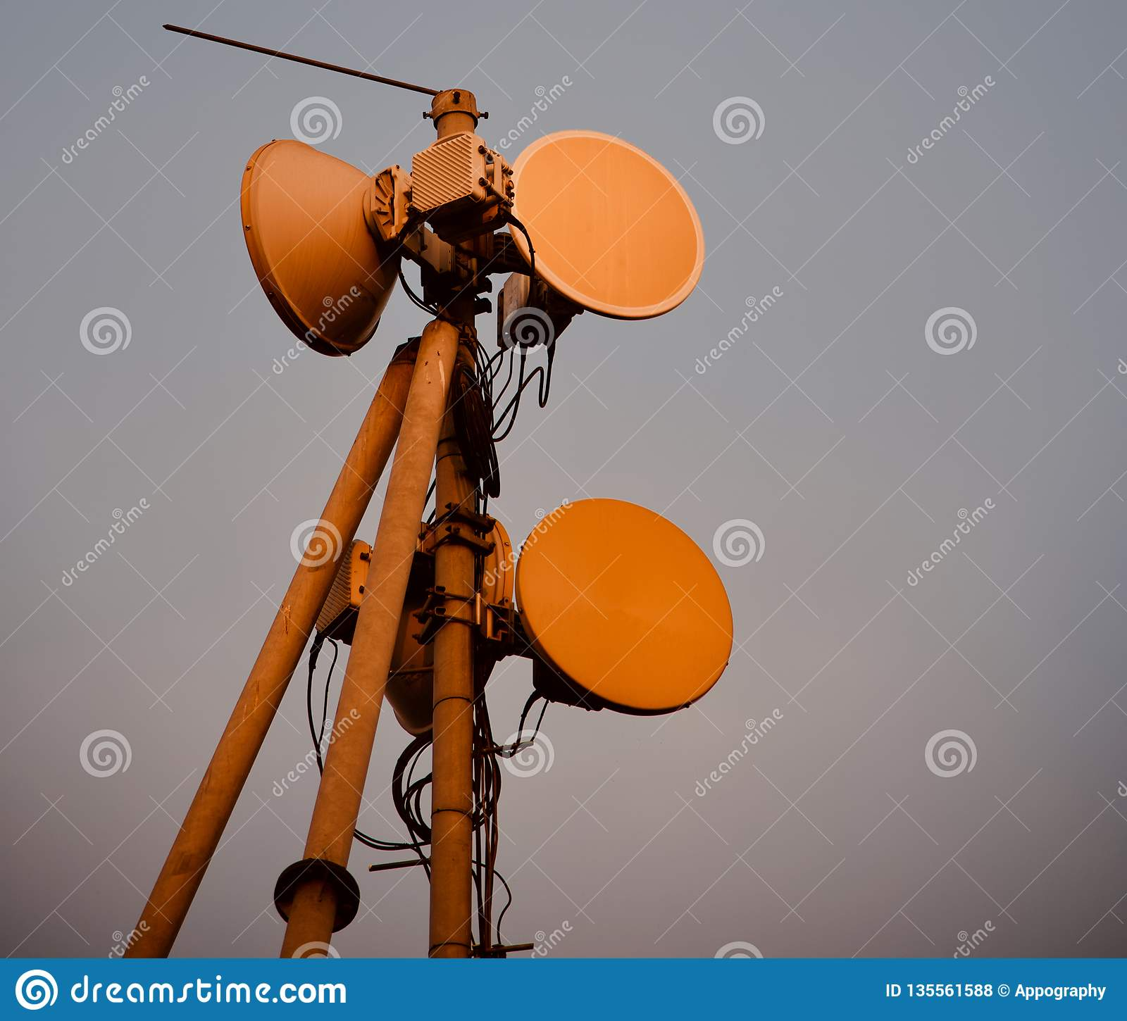 Microwaves antenna of a mobile network tower
