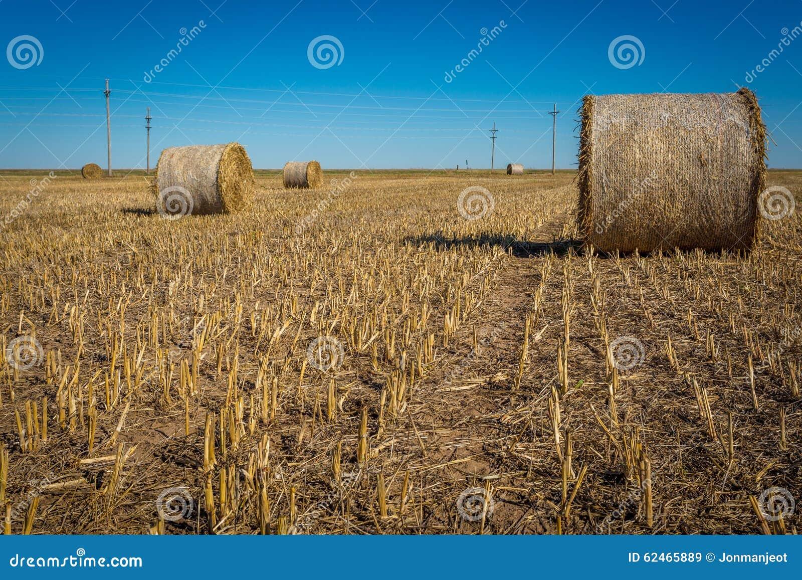 Midwest καλλιέργεια