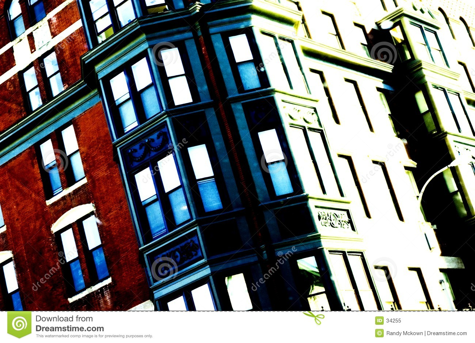 Miejski żywy
