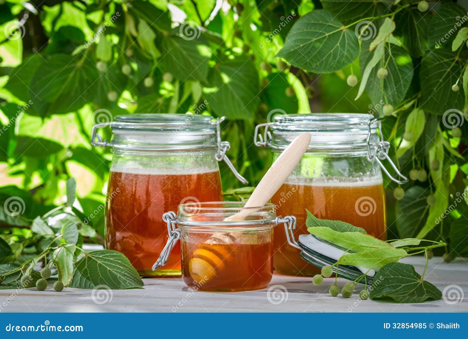 Miel dans un pot sur le fond des arbres de tilleul