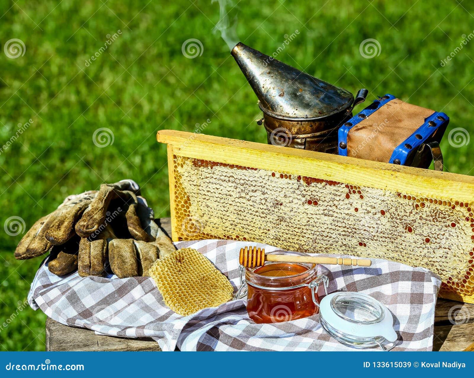 Miel de vue outils pour l apiculture sur la table en bois Concept de l apiculture