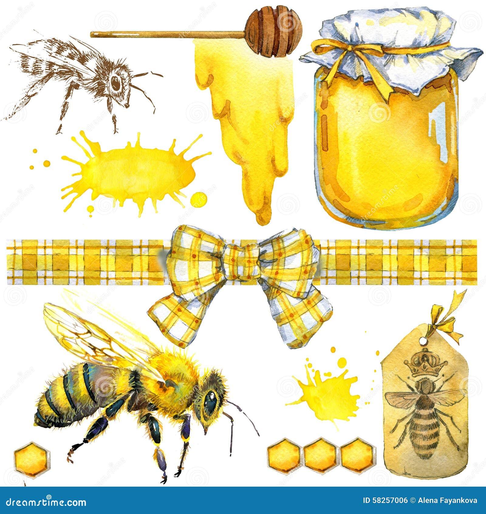 Miel nid d 39 abeilles abeille de miel placez pour des produits de label d - Abeille nid dans le sol ...