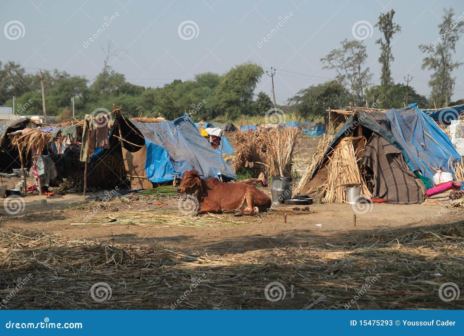 Mieszkania biedni
