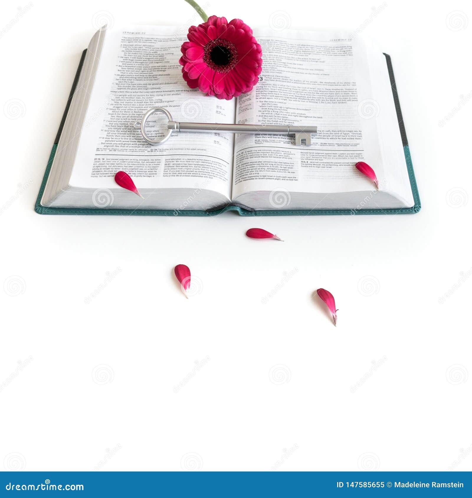 Mieszkanie nieatutowy: otwarta biblia, książka, klucz i menchie, popielaty, srebro/, purpura, violette, czerwony Gerbera kwiat z