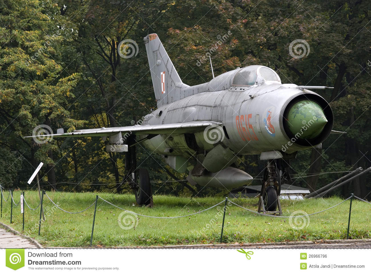 Soviet MiG fighter http://www.dreamstime.com/royalty-free-stock-image-mig-21-soviet-fighter-warszawa-poland-image26966796