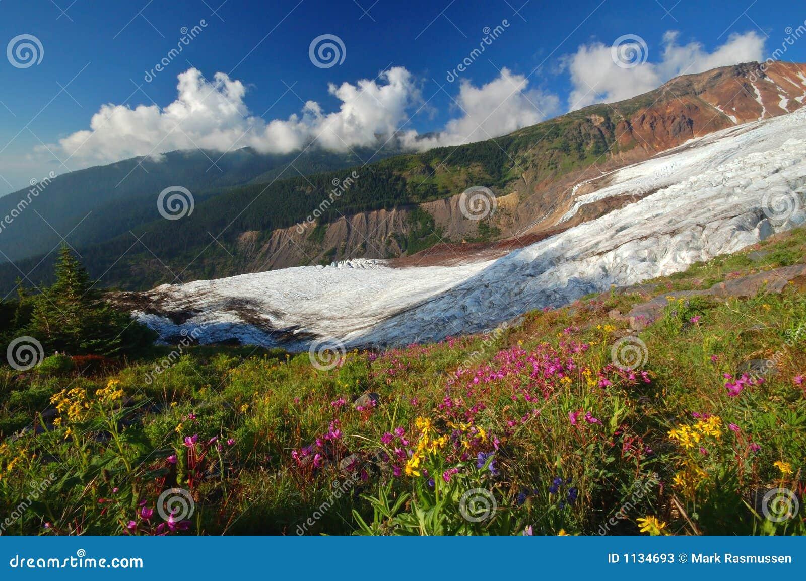Mighty glacier in summer
