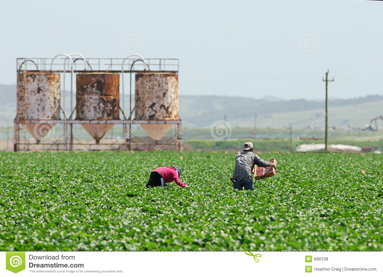 Migrant Farmworkers in California