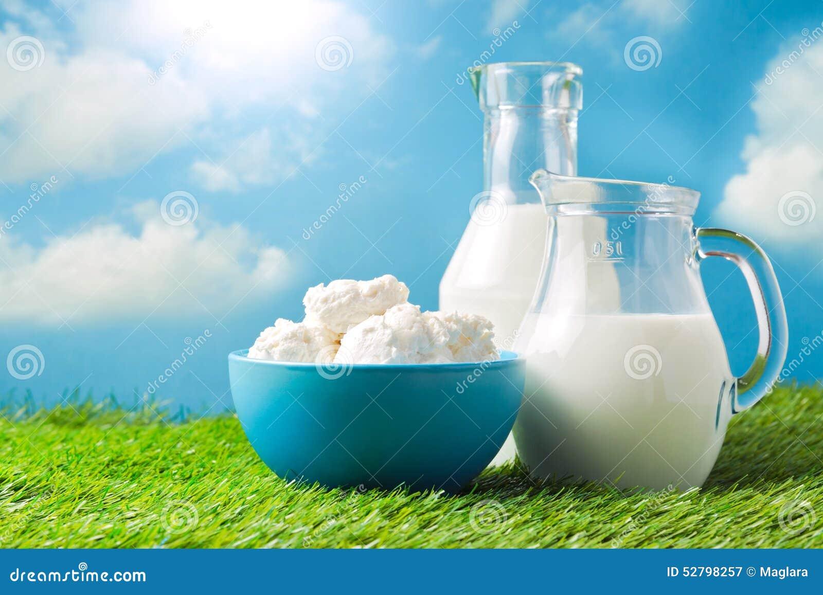 Milch und Hüttenkäse über Hintergrund der Wiese und des blauen Himmels