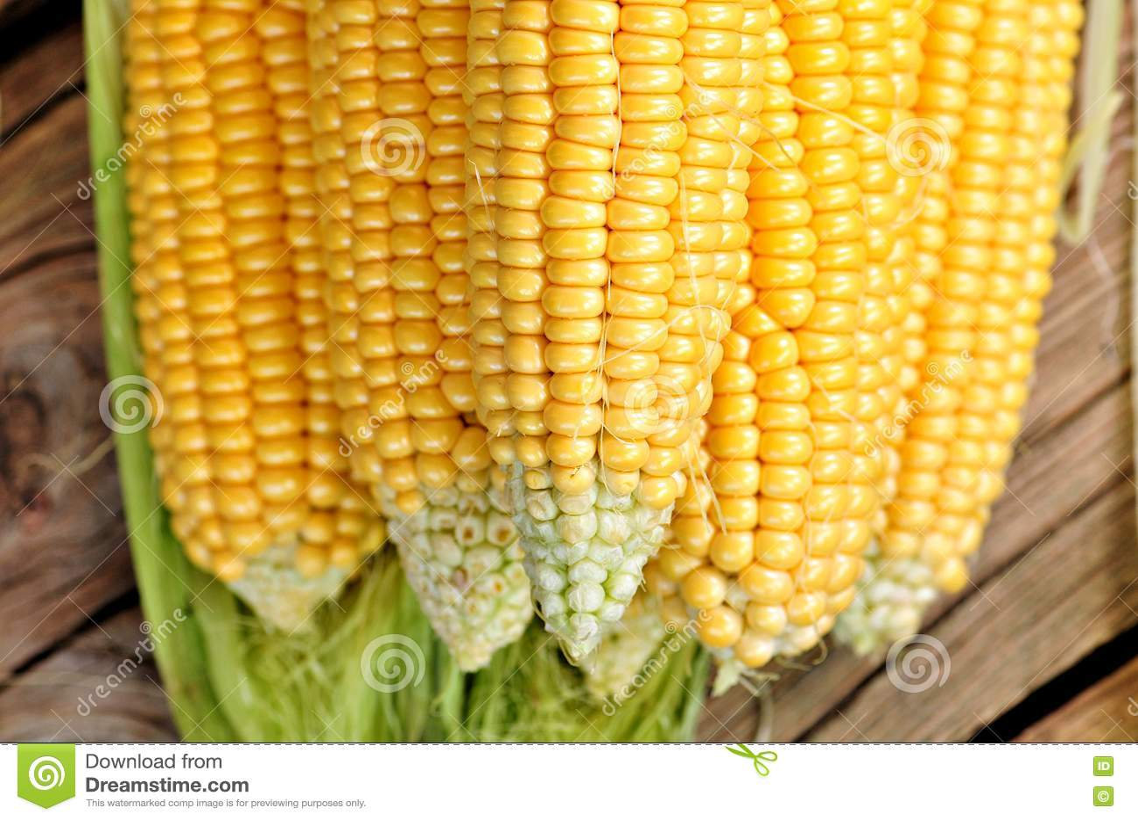 Milho amarelo orgânico Fundo Alimento delicioso