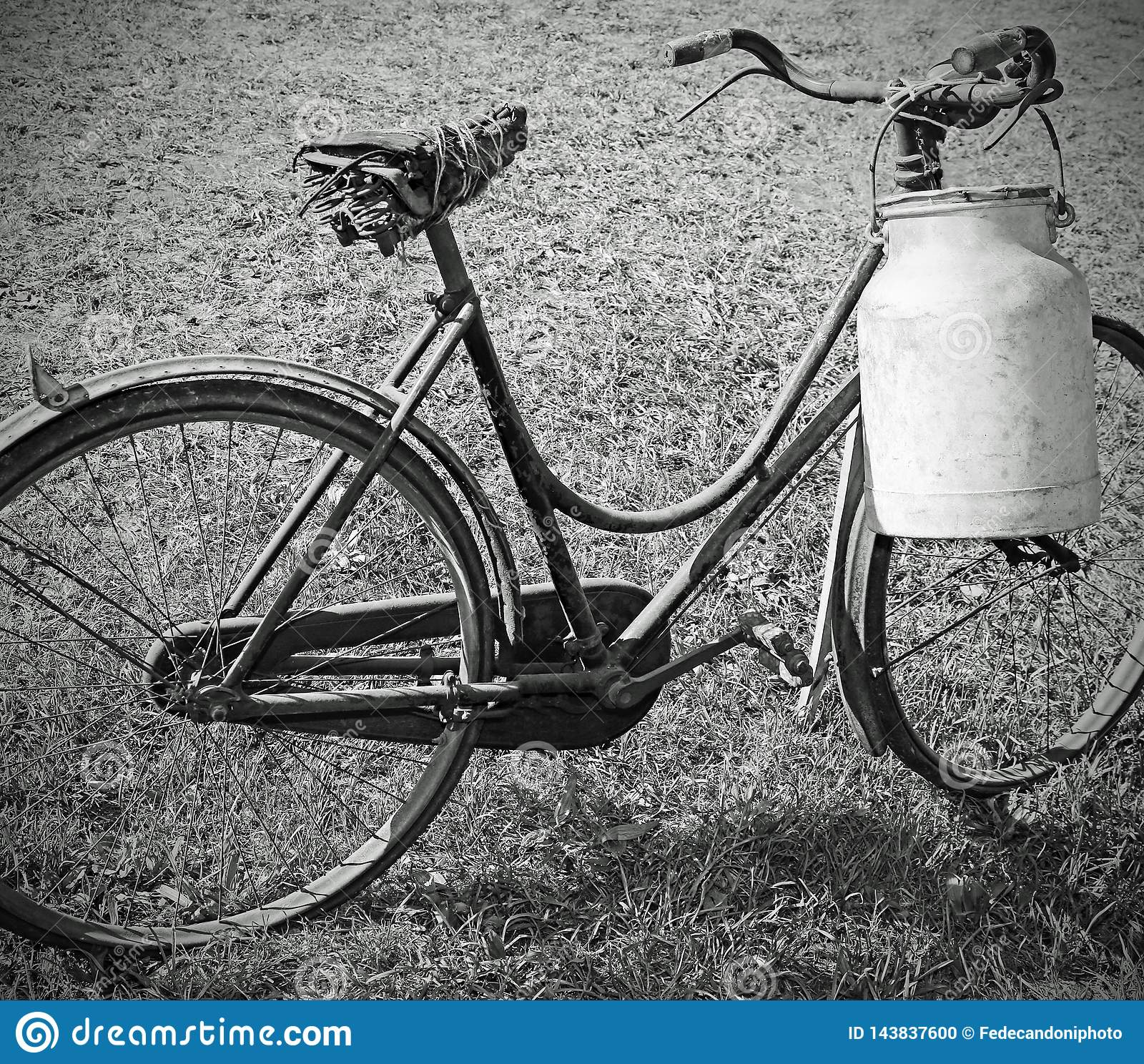 milking bike with bin for milk transport with balck and white e