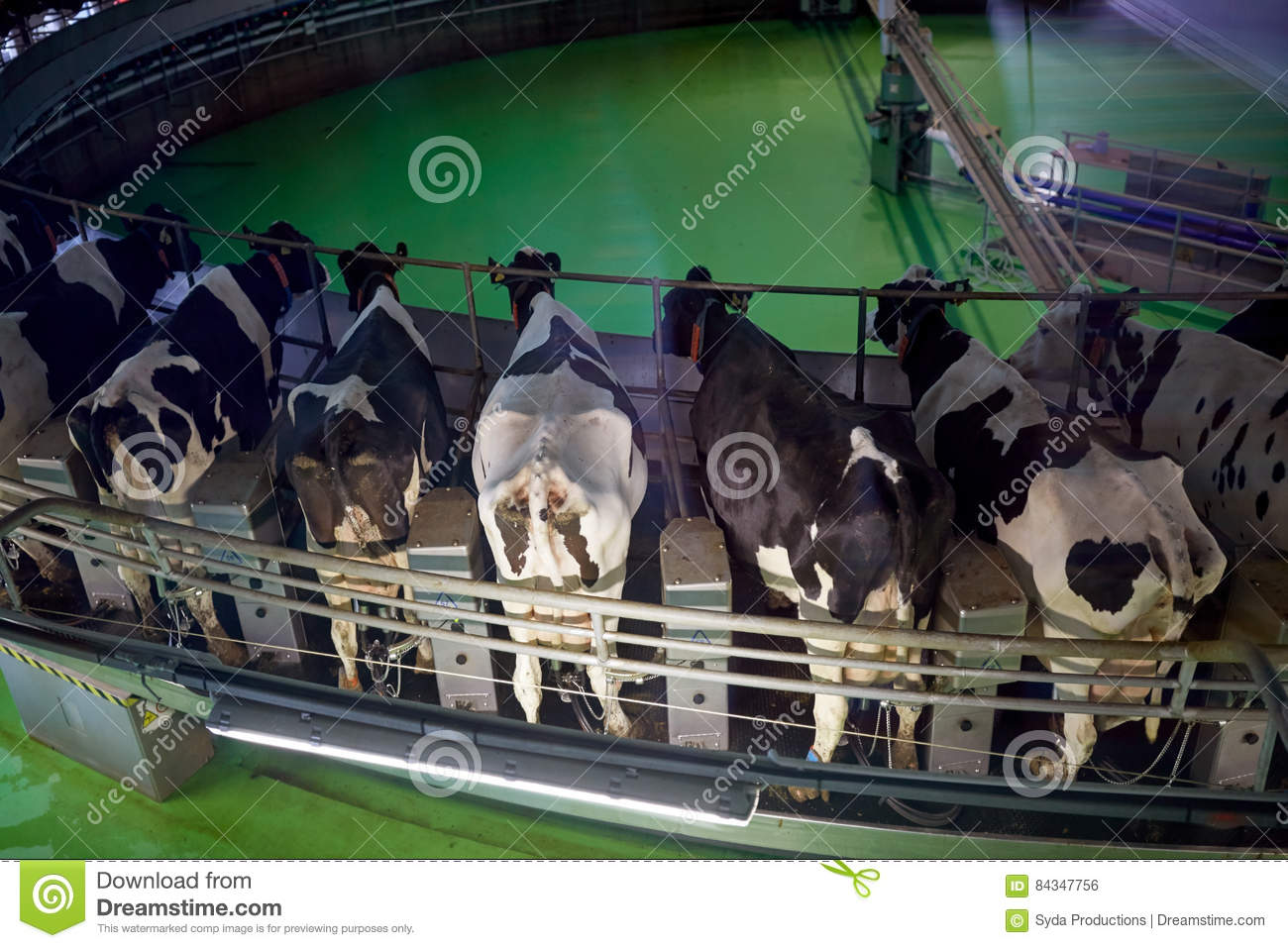 Dairy Farm Group: Redesign of Business Systems and Processes Harvard Case Solution & Analysis