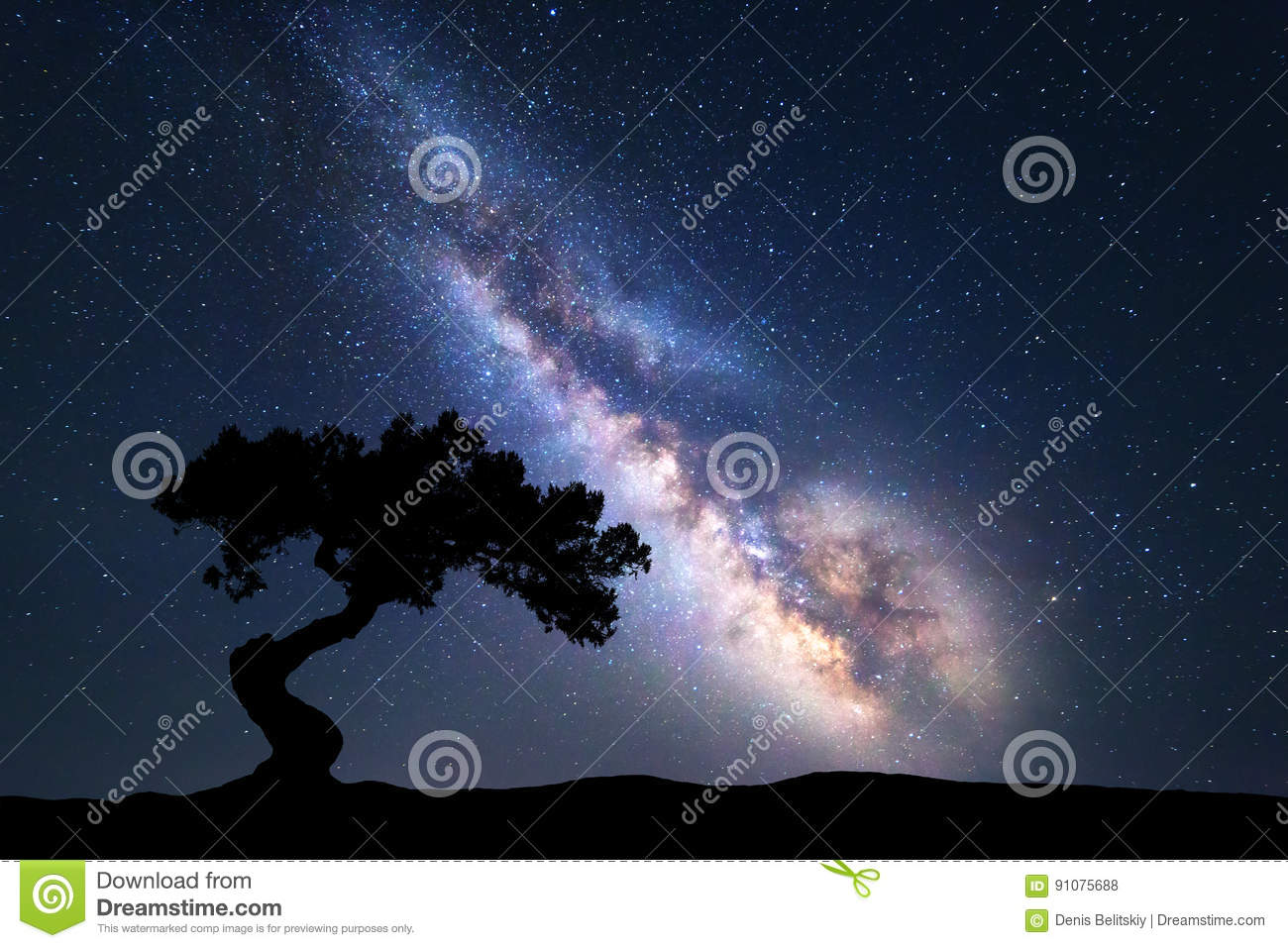 Milky Way With Alone Old Tree On The Hill Stock Photo ...