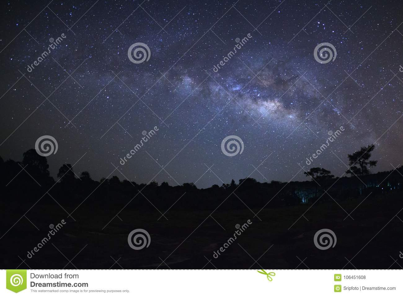 Milky way galaxy and silhouette of tree with red light at Phu H