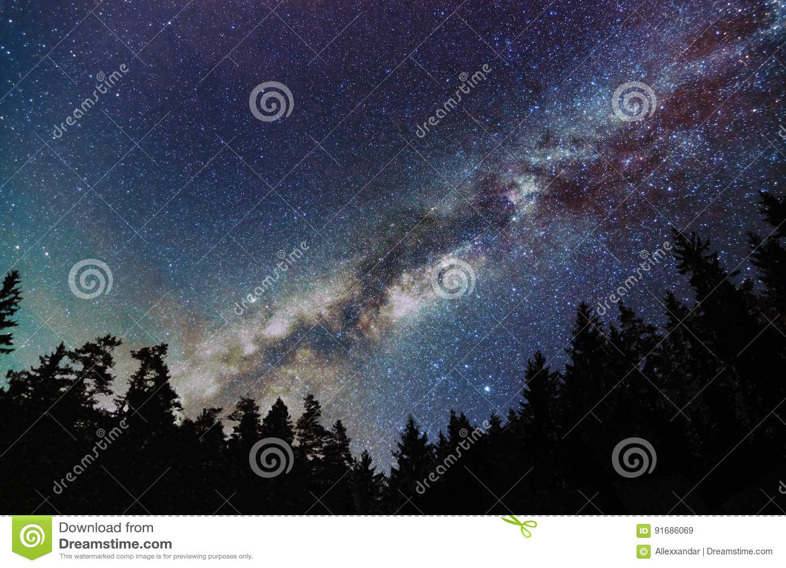 Milky Way Galaxy, Starry sky with trees. Starry night.