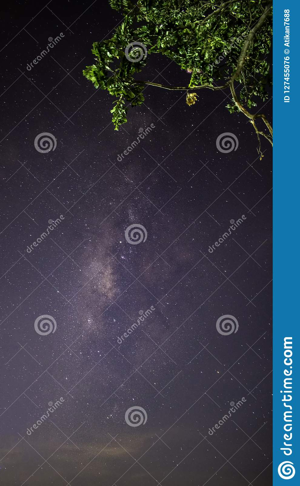 Milky way galaxy with stars and space dust in terraced rice field. (Visible noise due to high ISO, soft focus, shallow