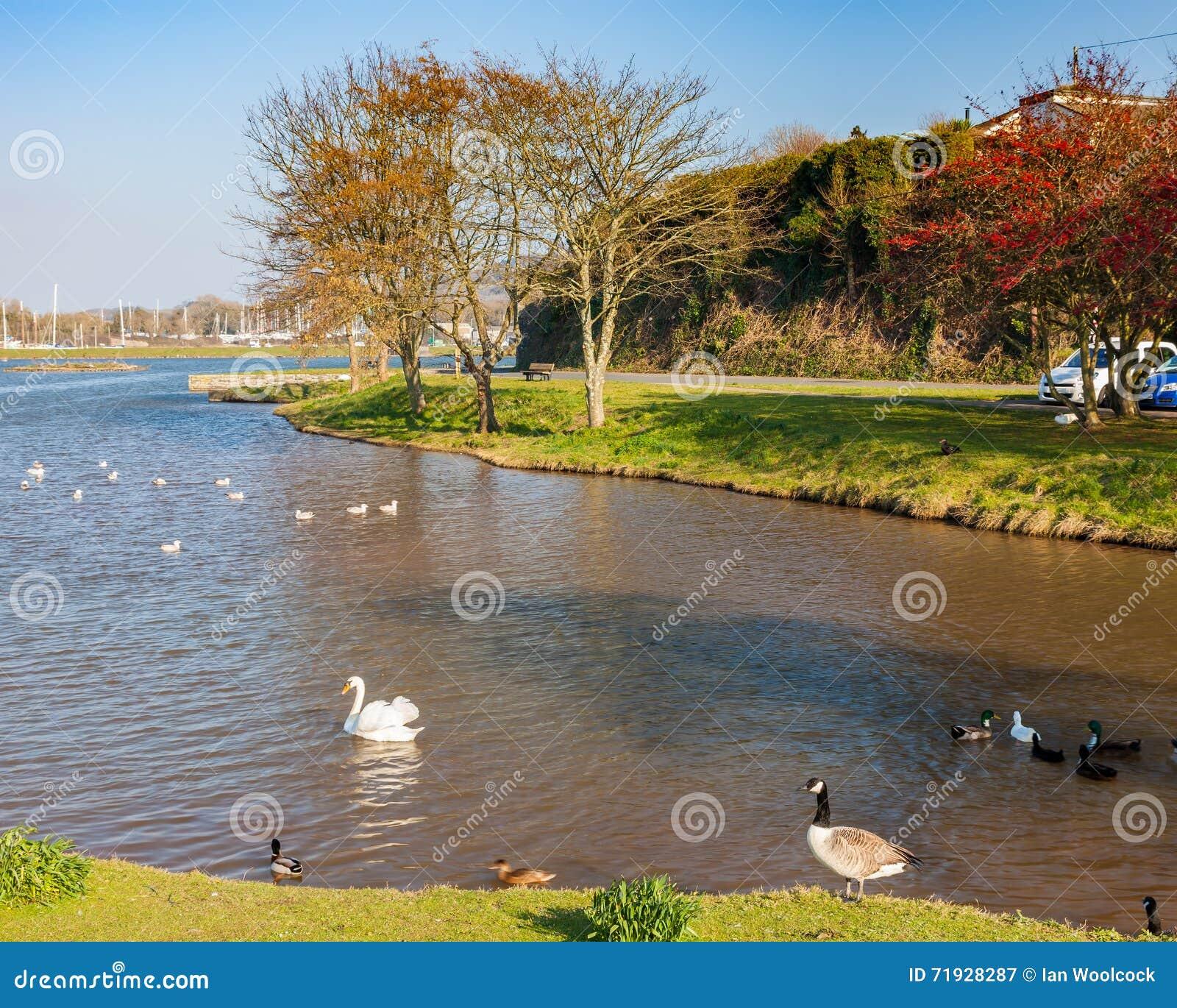 Millbrook Корнуолл Англия