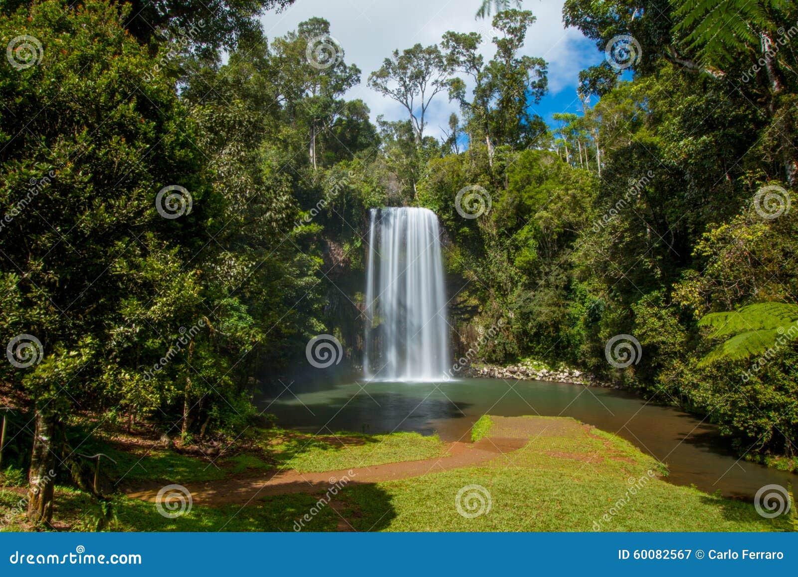 Miller Millaa Falls