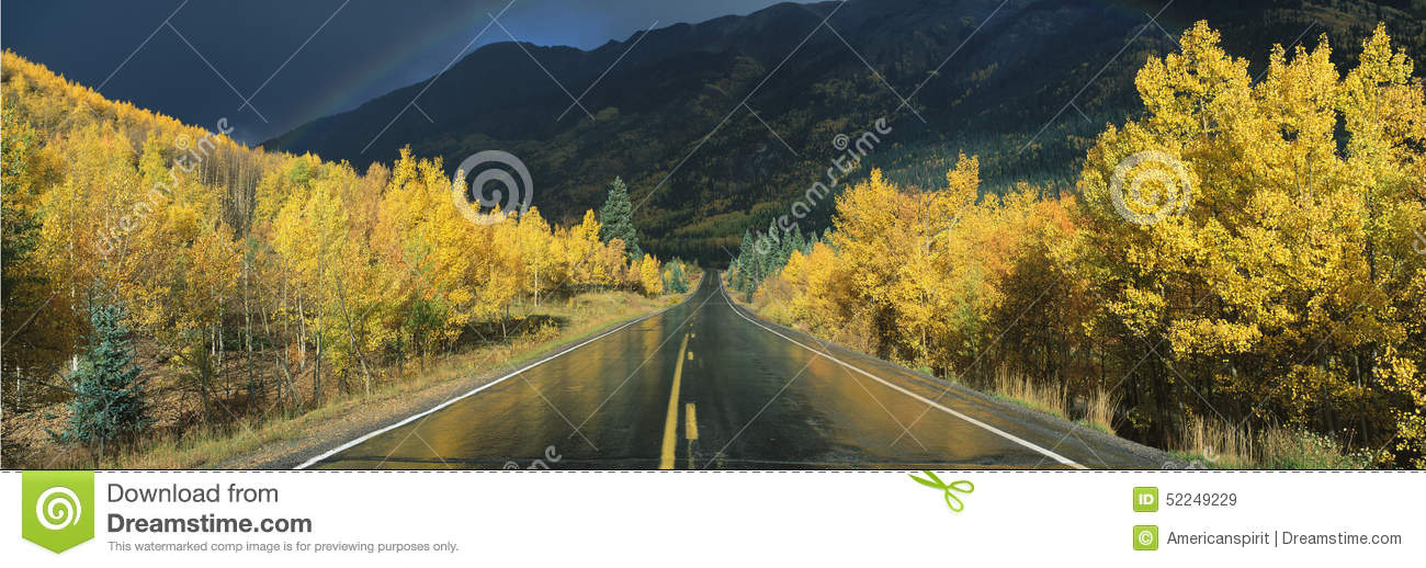 Download This Is The Million Dollar Highway In The Rain. The Road Is Dark And Wet. There Are Aspen Trees With Gold Leaves On Either Side Of Stock Image - Image of america, autumn: 52249229