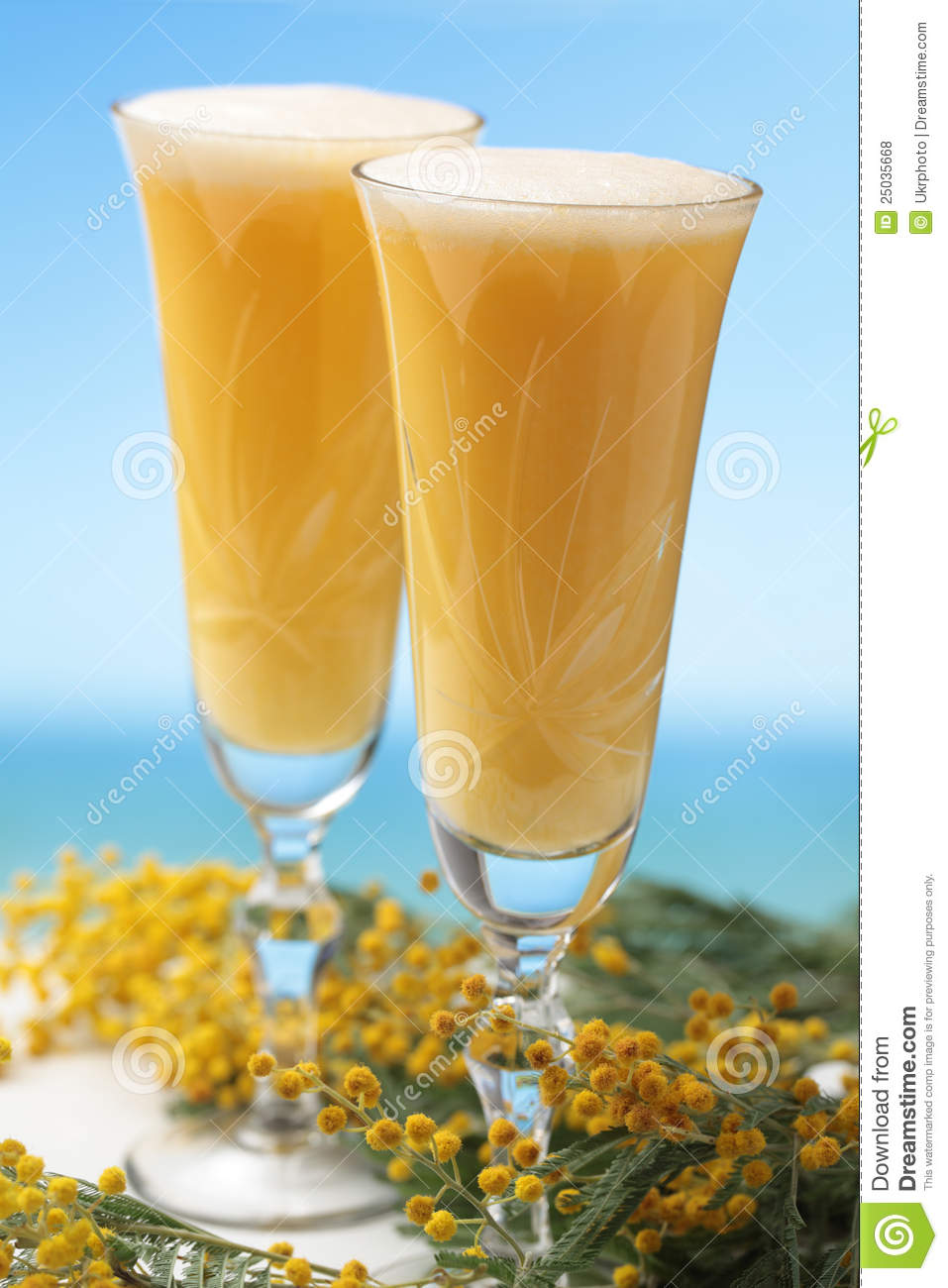 Mimosa cocktail stock photo image of refreshment mimosa for Cocktail mimosa