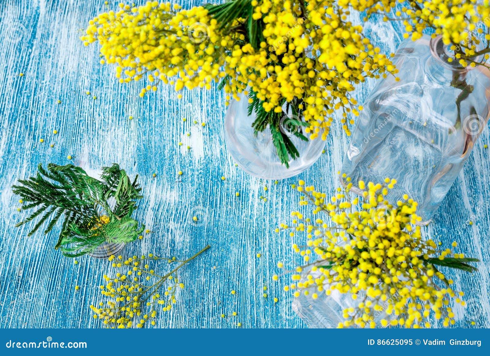 Mimosa in vaso di vetro su derisione di vista del piano d for Mimosa in vaso