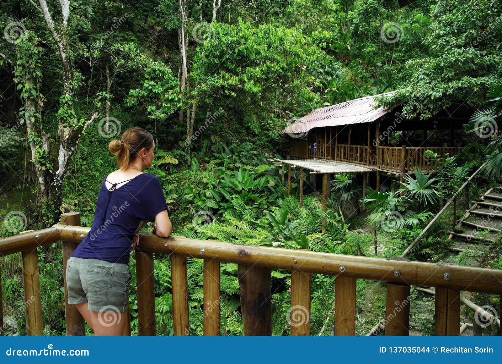 MINCA, КОЛУМБИЯ, 14-ОЕ АВГУСТА 2018: Молодая женщина смотря экологический коттедж леса в Minca