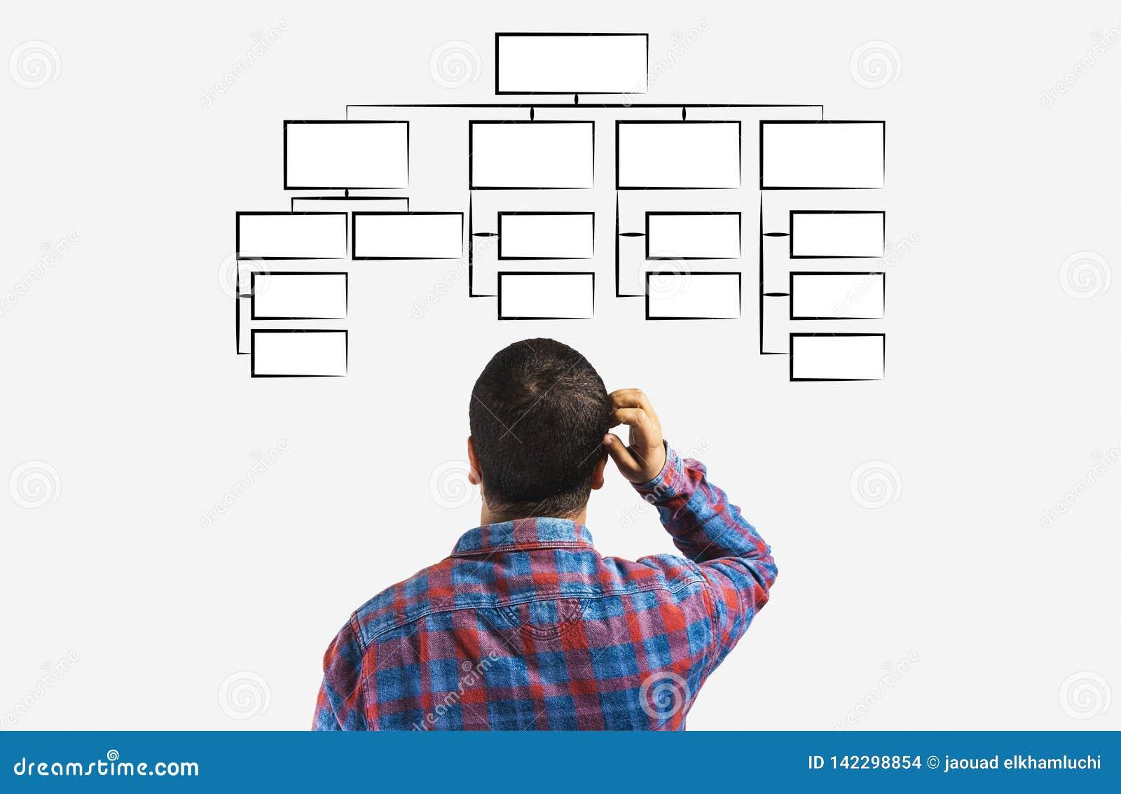 Mindmap pojęcie, Biznesowy mężczyzna patrzeje plan hierarchia, zarządzanie organizacja