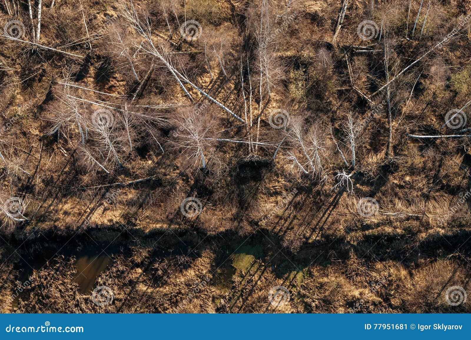 Mineração da turfa
