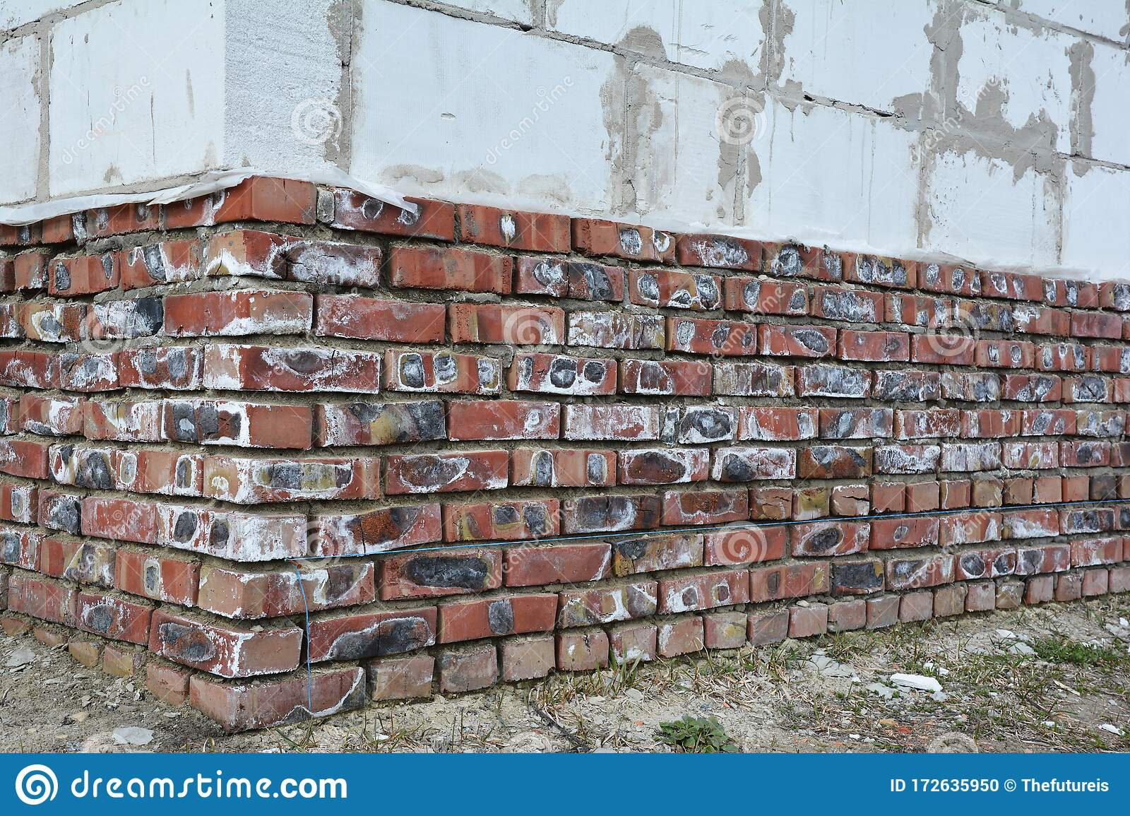 Mineral Efflorescence On Brick House Foundation Wall Efflorescence Salt As An Indicator Of Moisture Problems In House Building Stock Photo Image Of Basement Salts 172635950