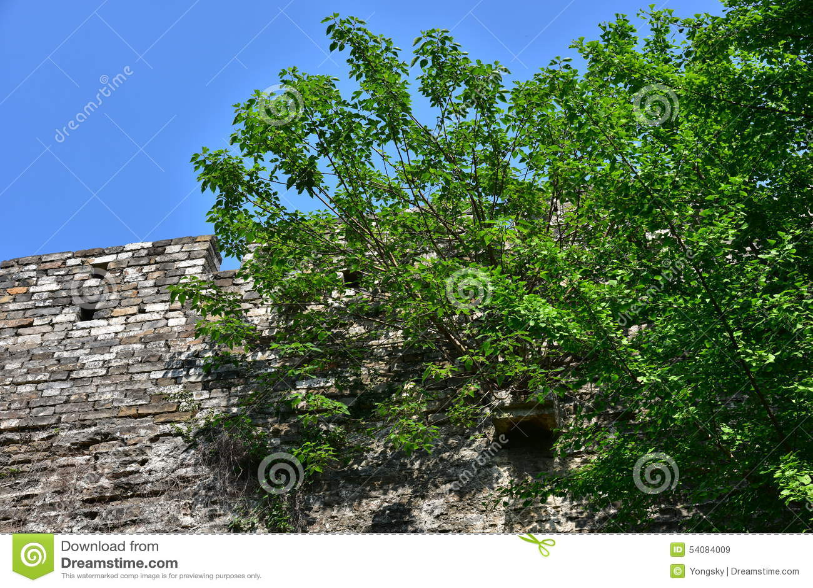Ming Dynasty City Wall in de lente