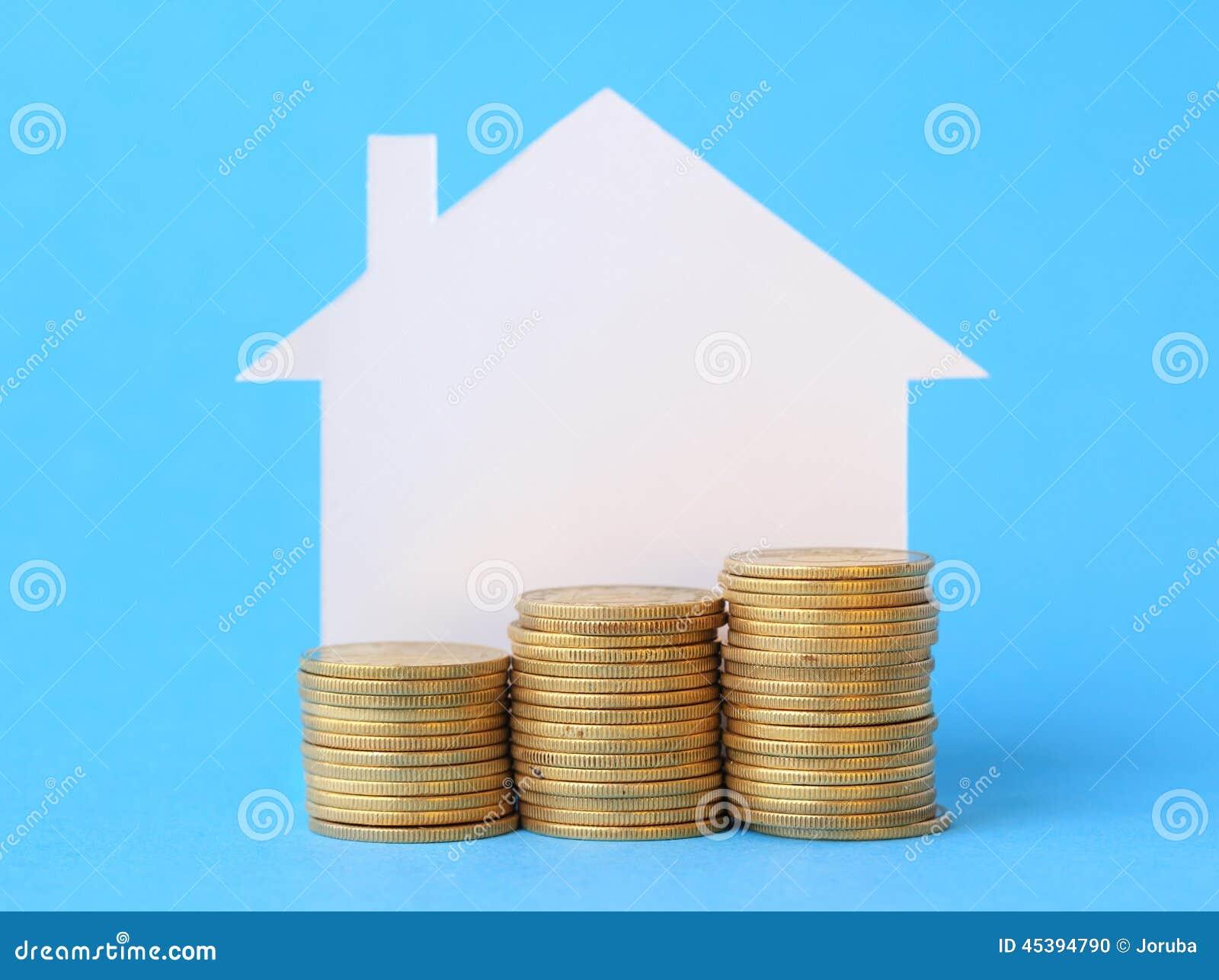Mini casa com dinheiro