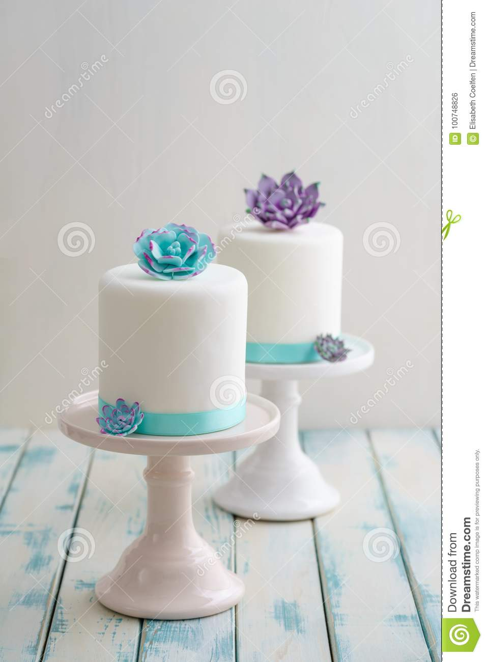 Mini Succulent Wedding Cakes Stock Photo Image Of Turquoise Birthday 100748826