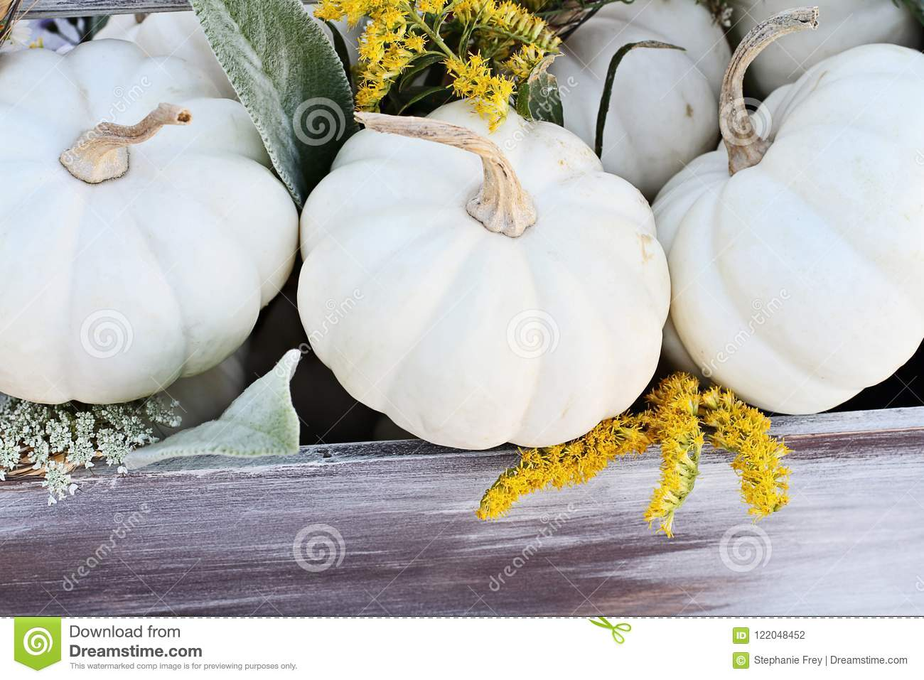 Mini White Pumpkins y Wildflowers